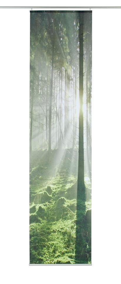Home Wohnideen Schiebegardine »Memphis« grün, H/B 245/60cm